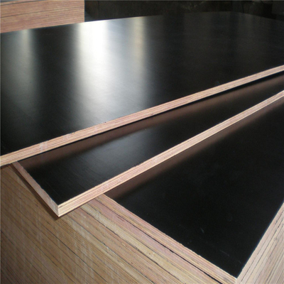 Black Film Faced Plywood For Building